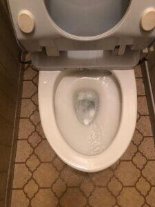 便器を設置しなおし作業完了となったトイレ
