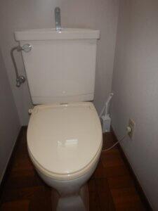 下着パンツがつまったトイレ