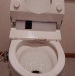 修理トイレつまり